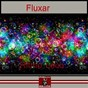 Album Ritmo loco de Fluxar