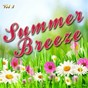 Album Summer breeze, vol. 3 de Soundsense
