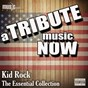 Album A tribute music now: kid rock - the essential collection de The Tribute Beat