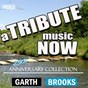 Album A tribute music now: 25th anniversary collection - a tribute to garth brooks de The Tribute Beat