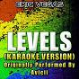 Album Levels (karaoke version) (originally performed by avicii) de Eric Vegas