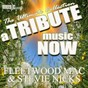 Album A tribute music now: fleetwood mac and stevie nicks - the ultimate collection de The Tribute Beat
