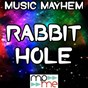 Album Rabbit hole - a tribute to jamie T. de Music Mayhem