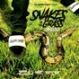 Album Snakes in the grass de Lonestar