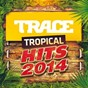 Compilation Trace tropical hits (2014) avec Axel Tony / Kymaï / DJ Jaïro / Kim, Marvin / Warren...