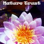 Album Nature Trust de Echoes of Nature, Mindfulness Meditation Music Spa Maestro, Meditación