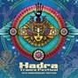Compilation Hadra trance festival, vol. 10 (anniversary edition) avec Balance / Alba / Unknown Reality / Stereomantra / Terra Nine...