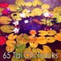 Album 65 tai chi tracks de Asian Zen Spa Music Meditation