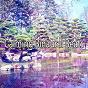 Album Calming binaural beats de Binaural Beats Brain Waves Isochronic Tones Brain Wave Entrainment