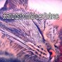 Album 36 sounds from natures embrace de Ocean Sound