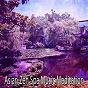 Album 31 audio chakras de Asian Zen Spa Music Meditation