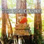 Album 37 stress free ambience environments de White Noise Therapy