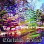Album 42 zen enlightened sounds de Asian Zen Spa Music Meditation