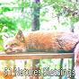 Album 51 natures blessings de Nature Sounds Nature Music