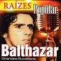 Album Raízes popular (grandes sucessos) de Balthazar