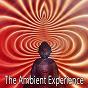 Album The ambient experience de Ambient Forest