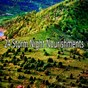Album 24 storm night nourishments de Rain Sounds Nature Collection