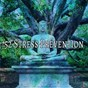 Album 52 stress prevention de Asian Zen Spa Music Meditation