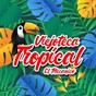 Compilation Viejoteca tropical / el mecánico avec Pedro Salcedo Y Su Orquesta / Edmundo Arias Y Su Orquesta / Los Imperiales / Lucho Bermúdez & Canta Matilde Diaz / Los Corraleros de Majagual...