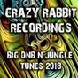 Compilation Crazy rabbit recordings big DNB and jungle tunes 2018 avec Exodus / DJ Purple Rabbit / Cooker & Hocaine / Cynical Rude Boy / Cynical Hussl...