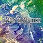Album 76 fully chilled tracks de Ocean Sound