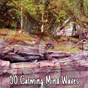 Album 50 calming mind waves de Yoga Sounds