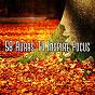 Album 58 auras to inspire focus de White Noise Research