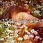 Album 70 sea sanctuary de Nature Sounds Nature Music
