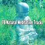 Compilation 78 natural meditation tracks avec Yoga Soul
