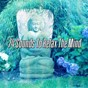 Album 74 sounds to relax the mind de Massage Tribe