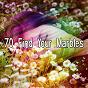 Album 70 find your marbles de Ocean Sound
