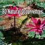 Album 80 natural occurrences de Music for Deep Meditation