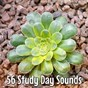 Album 56 study day sounds de Spiritual Fitness Music