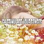 Album 64 stimulate your senses de Mother Nature Sound Fx