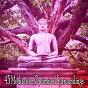 Album 43 meditation optimised surroundings de Entspannungsmusik