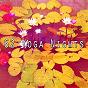 Album 62 yoga nights de Zen Music Garden