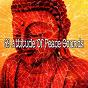 Album 69 attitude of peace sounds de Zen Music Garden