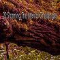 Album 22 storming the mental challenges de Rain Sounds Nature Collection
