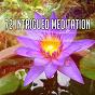 Album 72 intrigued meditation de Massage Tribe