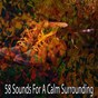 Album 58 Sounds for a Calm Surrounding de Spiritual Fitness Music
