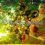 Album 43 the flowing mind de Lullabies for Deep Meditation