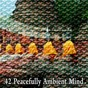 Album 42 peacefully ambient mind de White Noise Research