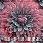 Album 41 sleep for your little angels de Relax Musica Zen Club