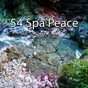 Album 54 spa peace de Spa Music Paradise