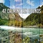 Album 42 calming zen sounds de White Noise Research