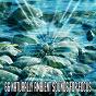 Album 66 Naturally Ambient Sounds for Focus de Nature Sounds Artists