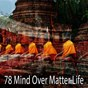 Album 78 mind over matter life de Massage Therapy Music