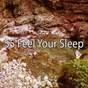 Album 55 feel your sleep de Rest & Relax Nature Sounds Artists