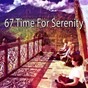 Album 67 Time for Serenity de Nature Sounds Artists