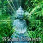 Album 59 sounds to research de Asian Zen Spa Music Meditation